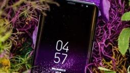 Galaxy S8 İle Çekilen Fotoğaflar Sızdırıldı!