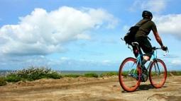 Ücretsiz Verilen Bisikletler Letgo'da!
